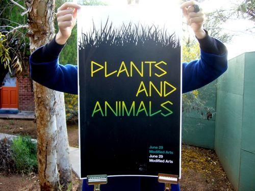 PlantsANDanimalsNEW4