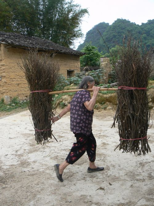Woman-with-branches-in-rice