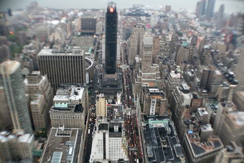 NYCFall2008