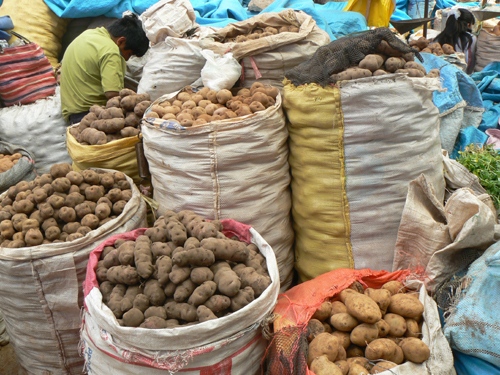 Product-Market---Potatoes
