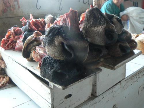 Cuzco-market---cow-snoats