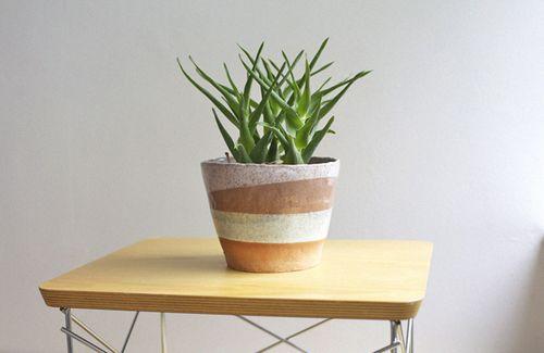 IC_planter2_sml