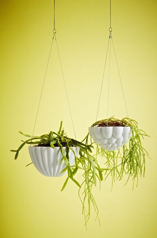 Hanging_jelly_planter_05