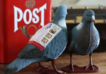 PigeonPost1
