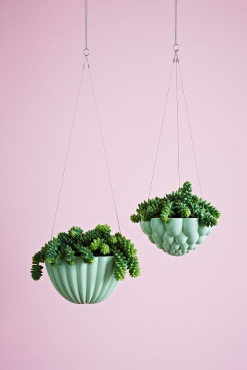 Hanging_jelly_planter_03