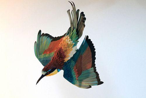 Birds-61 (1)