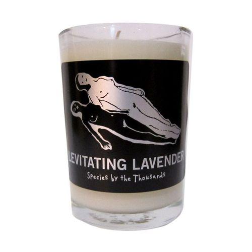 Candle-Lavender_891ff318-2e10-47af-8b96-5f77a60eac62_grande