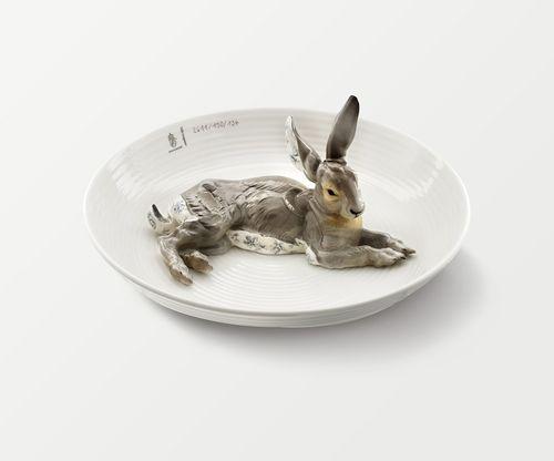 Rabbit-new
