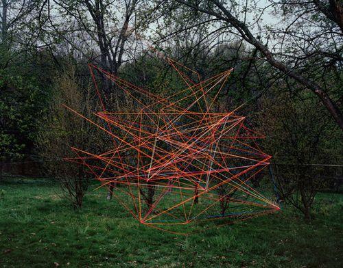 Thomas-jackson-emergent-behavior-trendland-05-800x628