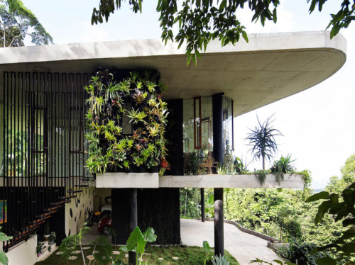 Planchonella-house-by-jesse-bennett-studio-6-800x598