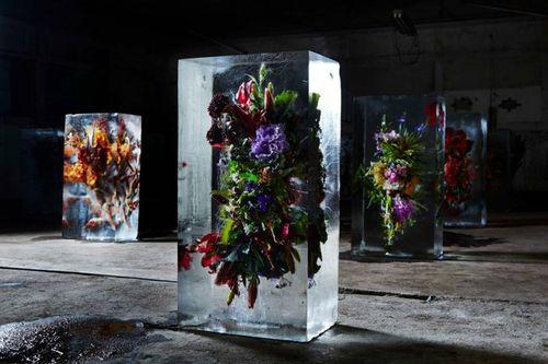 Iced-flowers-makoto-azuma-750x500