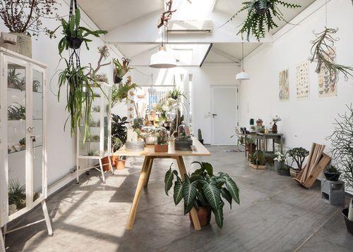 Flo-Atelie-Botanical-shop-by-Epicentro-brazil-016-800x572