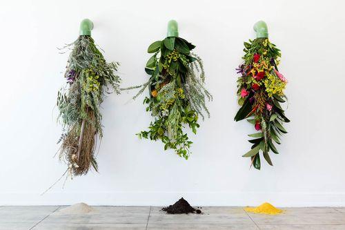 Karolina-Maszkewicz-ochi-projects-photo-michael-underwood-02