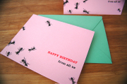 Notecards_ants_1